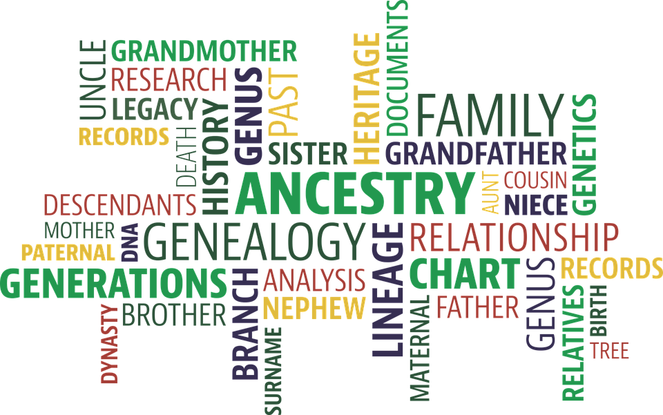 genealogy.png#asset:606